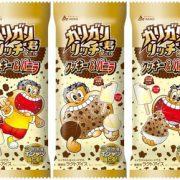 【画像】赤城乳業、秋冬向け新フレーバー「ガリガリ君リッチクッキー&バニラ」