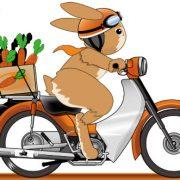 バイクに半袖軽装で乗る奴ヤバいでしょwwwwwwww