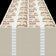 【朗報】シン・エヴァンゲリオンさん、今週で30億以上が確定!!!!